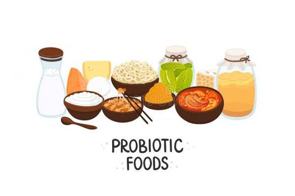 Probiotic and Prebiotic
